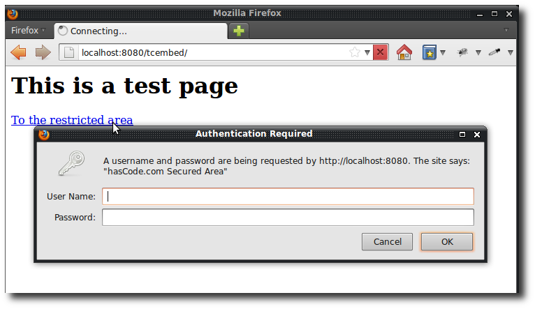 Basic Authentication: The login prompt to access the restricted JSP