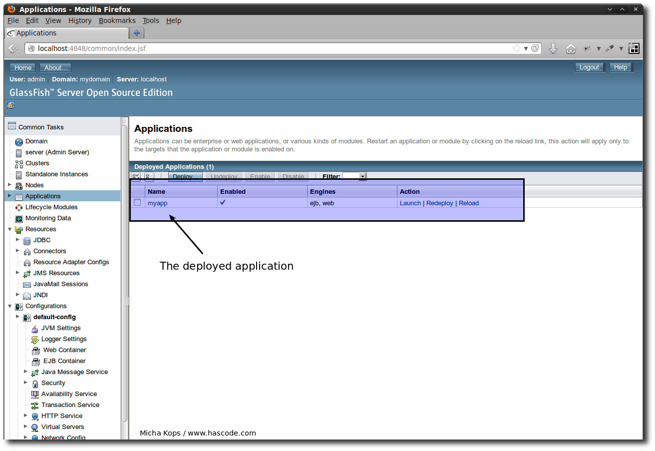 The application deployed on the GlassFish server.